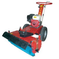 GS 1010HHB Petrol Sweeper