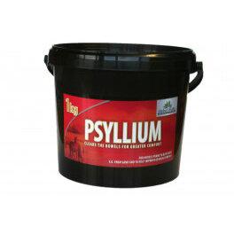 Global Herbs Psyllium Husks 1kg