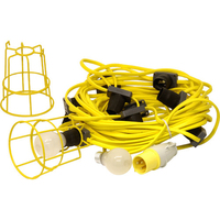 PREDATOR 110V LED FESTOON 100M (3M SP) LIGHTING KIT