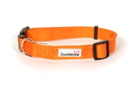 Doodlebone Adjustable Bold Collar Medium - Orange x 1