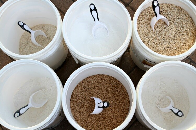 Food storage buckets
