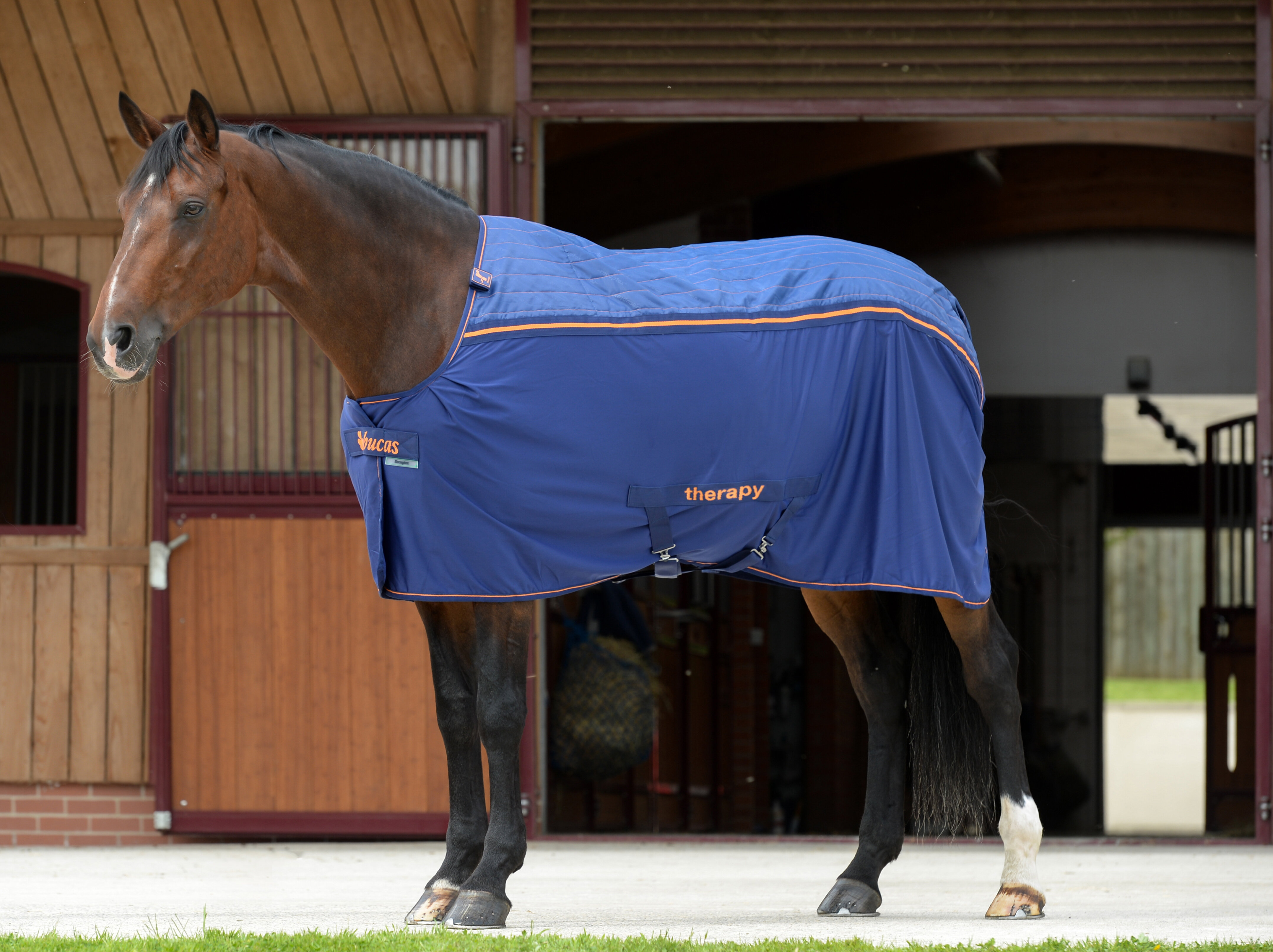 Bucas Therapy Cooler 125 Navy/Si