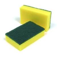 Sponge Scourer