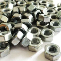 M6 Hex Nuts