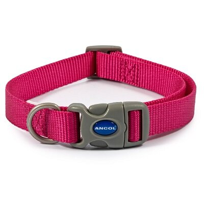 Ancol Raspberry Adjustable Nylon Dog Collar 30 - 45cm