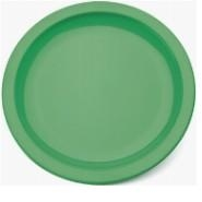 "Large Narrow Rimmed Plate Emerald GreenPolycarbonate 9"" 23cm"