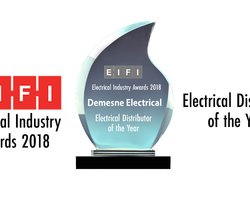 The annual Electric.ie awards took place in Dublin's Red Cow Hotel last Friday 21st September & Demesne came away with one of the awards!