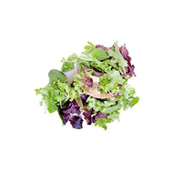 Crispy Salad Mixed (500gr)