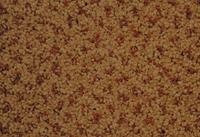 SPECTRUM DOT 438210 4M INDIAN TAN