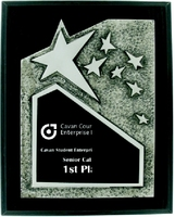 25cm Black Plaque with Star Front