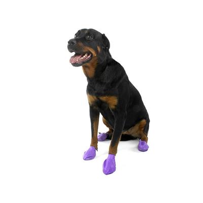 Pawz Dog Large (12)