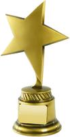 20cm Gold Star Award | TC40