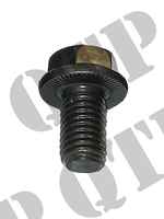 Transmission Drive Shaft Bolt