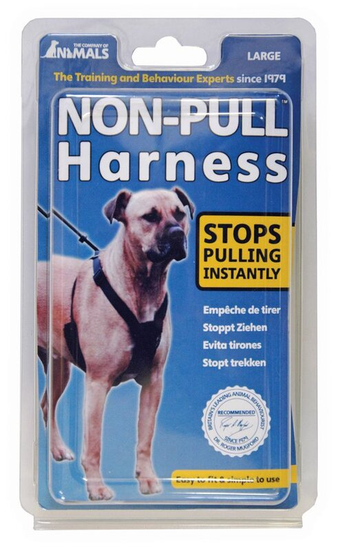 Company of Animals Non-Pull Harness Black - Large