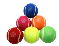 Dog Life Tennis Balls - 6-Pack x 1