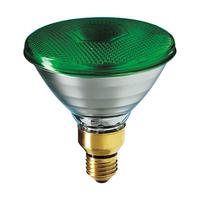 80W PAR 38 Lamp Green