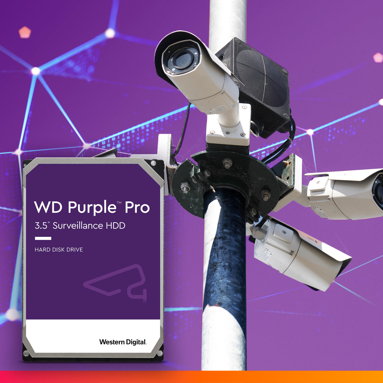Western Digital Purple Pro