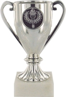 14cms Plastic Silver Cup on White Marble