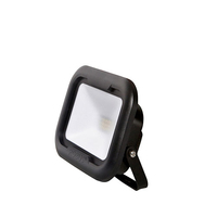 Robus Remy 20W LED Floodlight IP65 4000k