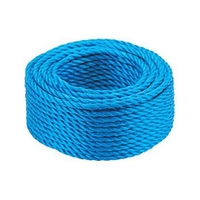 BLUE ROPE 10MM X 200MTR