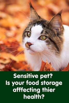 Is your pet food storage making your pet ill?
