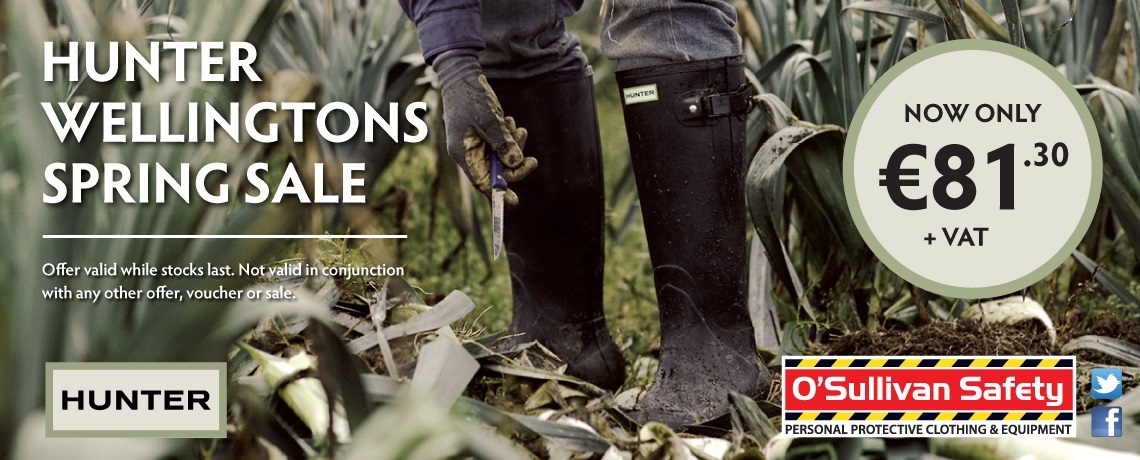 Hunter Wellingtons Spring Sale.  All Hunter Wellingtons Now Only €81.30 + VAT