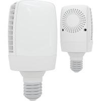 100W LED Street Lamp 4200K