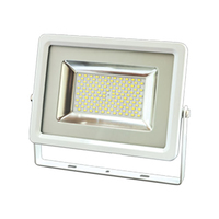Capella 100w LED Slim Floodlight Warm White