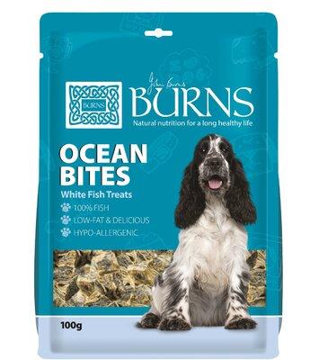 Burns Ocean Bites White Fish Dog Treats 100g x 1