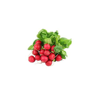 Radish (Bag) Bunch
