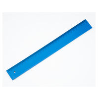 Metal Detectable Ruler - 30cm