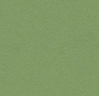 BULLETIN BOARD 6mm x 1.22m 2213 BABY LETTUCE