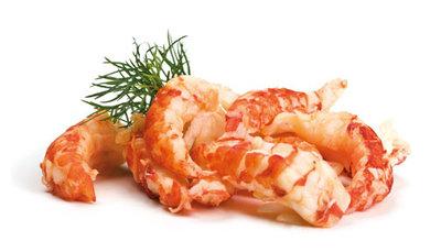 Crayfish Tale