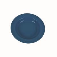 Plastic 24cm Flat Plate Blue
