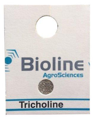Tricholine B (Trichogramma brassicae) Hanging Card of 200 x50 (10,000)