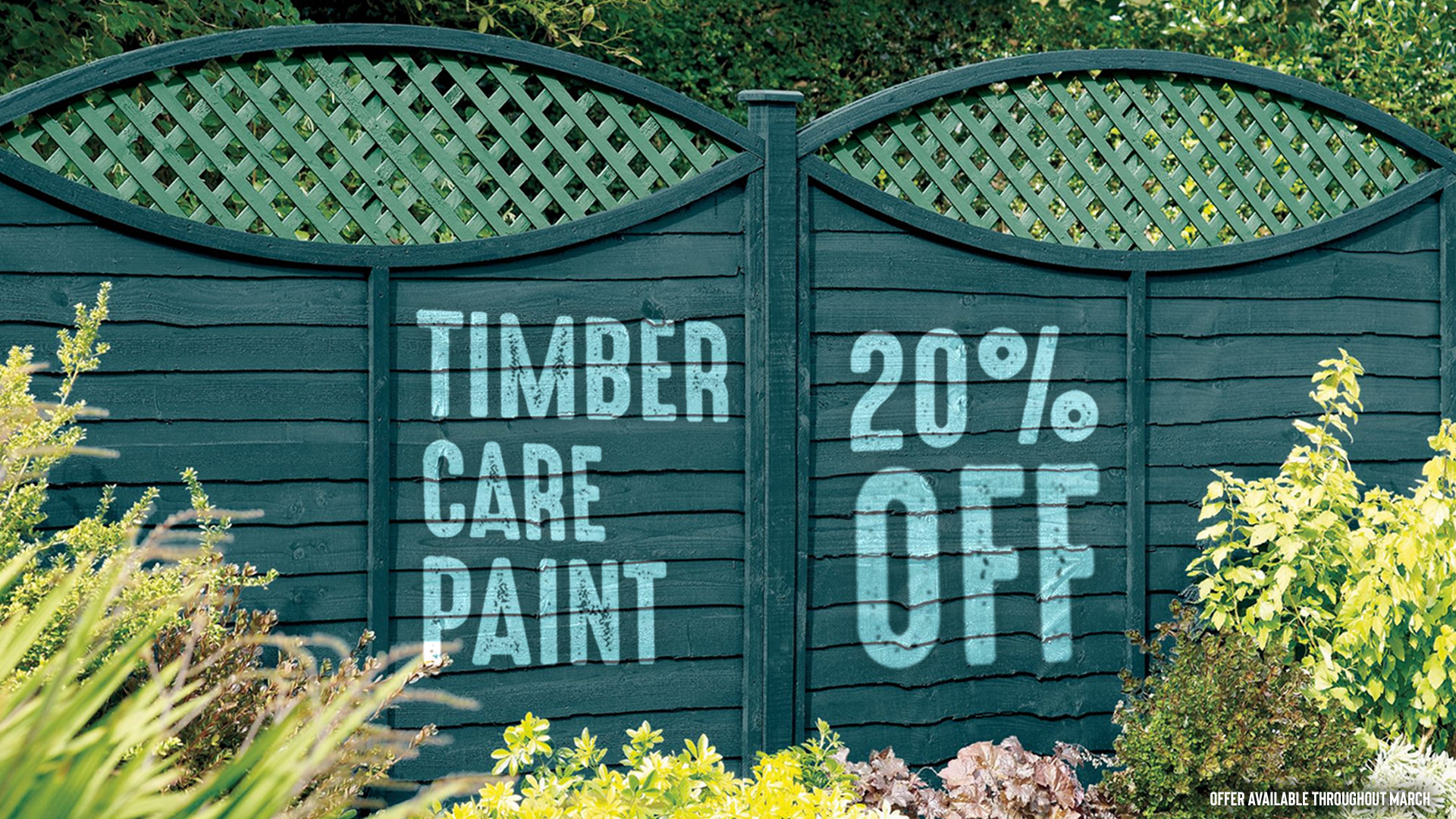 Timber Care Paint