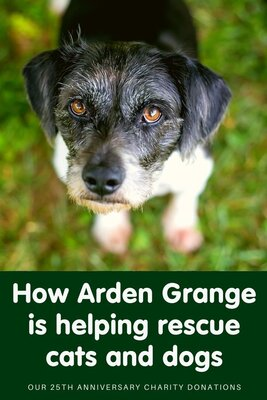 How Arden Grange is helping cats and dogs in UK rescues