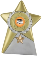 10cm Gold Star Plaque (Gold & Silver) | TC39
