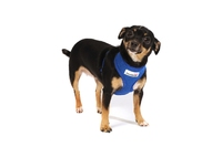 Doodlebone Mesh Harness X-Large - Blue x 1