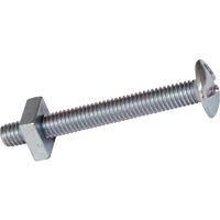 BOLT GUTTER M6 X 25MM EACH