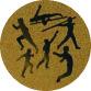 Multi Sport (25mm Gold Centre)