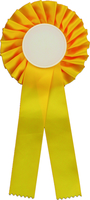 25cm Rosette with 50mm Recess (Yellow)