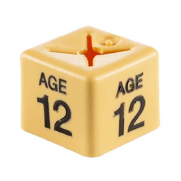 SHOPWORX CUBEX 'Age 12' Size cubes - Beige(Pack 50)