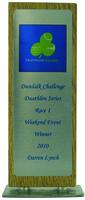 25cm Full Colour Award on Natural Wood (Inc P
