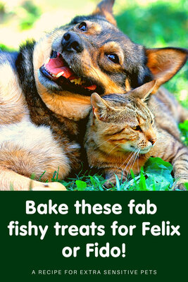 How to make fab fish cake bites for Felix and Fido!
