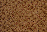 SPECTRUM DOT 438210 4M INDIAN TAN