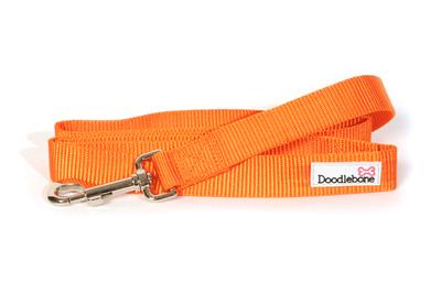 Doodlebone Bold Nylon Lead 20mm x 1.2m - Orange x 1