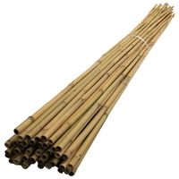 BAMBOO CANES 2.4 MTR / 8 FT.