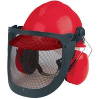 Draper Forestry Helmet