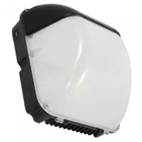 Skyline pro LED bulkhead 30w 2550 lumen